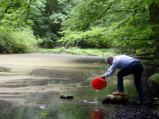 "Bergen County Executive James Tedesco III releases a bucket of minnows into a pond in Borg's Woods as part of the county's mosquito control program, ""Bergen Bites Back."""