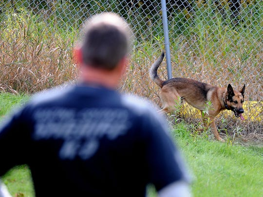 Deputy Ed Drewitz of the Racine County Sheriff's Department works with his K9 partner Friday during the training offered at a former packing plant on E. University Avenue October 6, 2015.