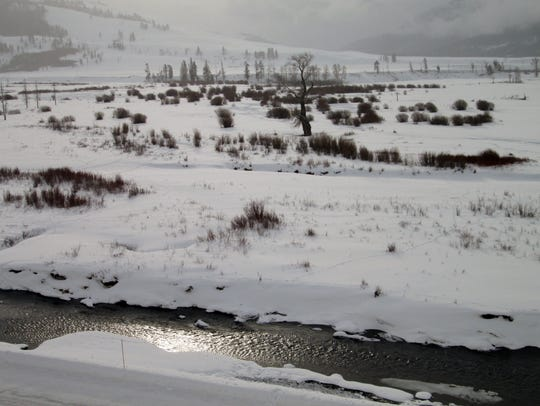 The Lamar River in Yellowstone National Park never