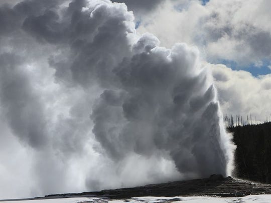 Sixty percent of the world's geysers reside in Yellowstone
