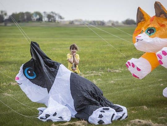 Ansel Tony Memorial Kite Festival