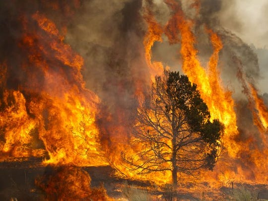 The Wallow Fire remains the largest wildfire in modern
