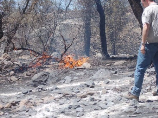 The Murphy Complex fire in 2011 near Rio Rico