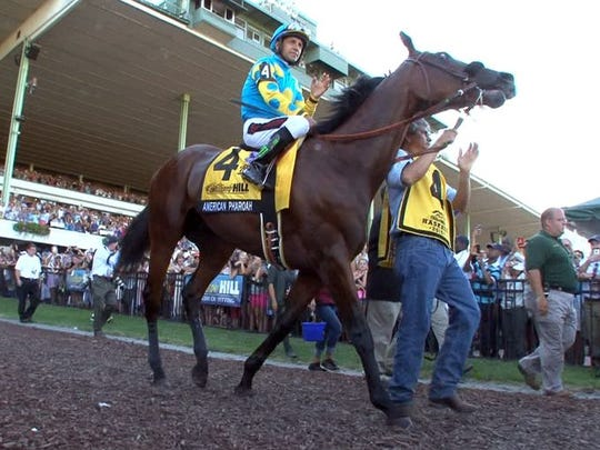 Triple Crown winner American Pharoah heads to the track before winning the 2015 Haskell Invitational.