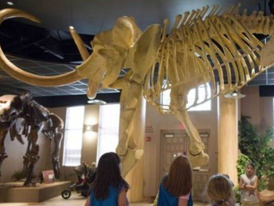 Children look up at one of the many skeletons at the