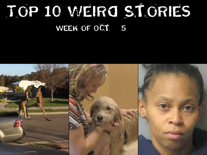 These were among the most viewed Weird stories on azcentral