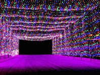Las Vegas' best seasonal shows and attractions