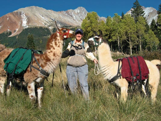 Laura Higgins, pictured with two llamas, is a guide and owner of San Juan Mountains Llama Treks, a company based in Cortez, Colo., that offers guided llama hikes.