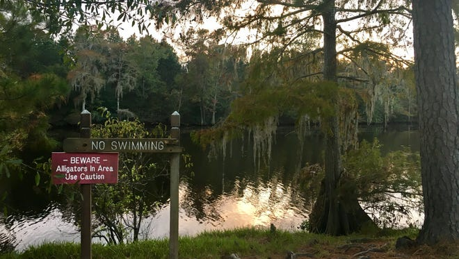 Sam Houston Jones State Park is more than 1,000 acres located in Moss Bluff. It is one of 21 Louisiana state parks.