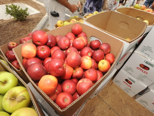 Apple Festival returns