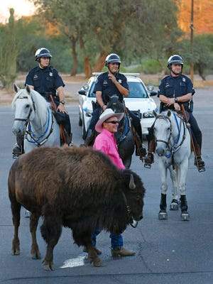 T.C. Thorstenson uses his buffalo Harley Walbanger to keep Scottsdale, Ariz., mounted police (Aaron Brown, Edward Chrisman and Sgt. Wes Brown) at bay outside Cave Creek Town Hall on Monday, Sept. 16, 2013.