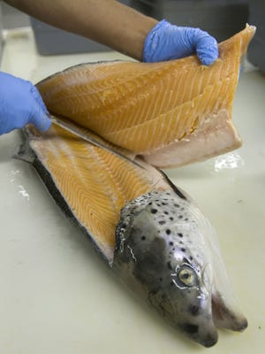 A salmon farm raised in British Columbia, Canada, is filleted at Trinity Seafood in Asbury Park, N.J. Salmon producers have joined to form the Global Salmon Initiative to reduce their environmental  footprint, improve their public image and meet growth in demand.