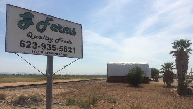 G Farms is on Litchfield Road, just north of Olive Avenue, near El Mirage.