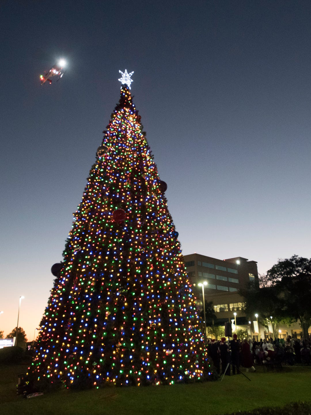 How Many Lights Per Foot Of Christmas Tree.Sacred Heart Throws The Switch To Light Up 40 Ft Christmas Tree