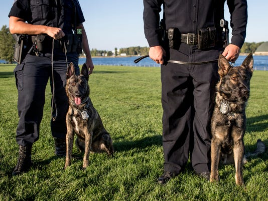 PTH1006 POLICE DOGS