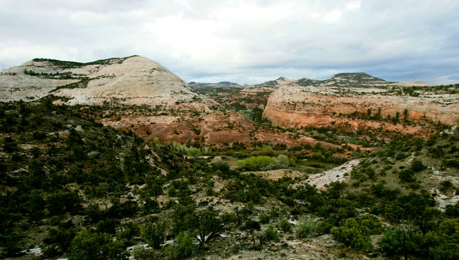 Cottonwood Canyon, center, branches off in the Grand Staircase-Escalante National Monument east of Boulder, Utah.