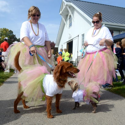Mutt March is Sunday at Goodells County Park