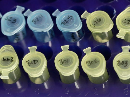 Vials of evidence in a sexual assault case are labeled