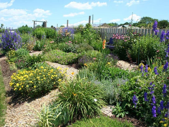 The sun perennial garden, one of the Master Gardeners'