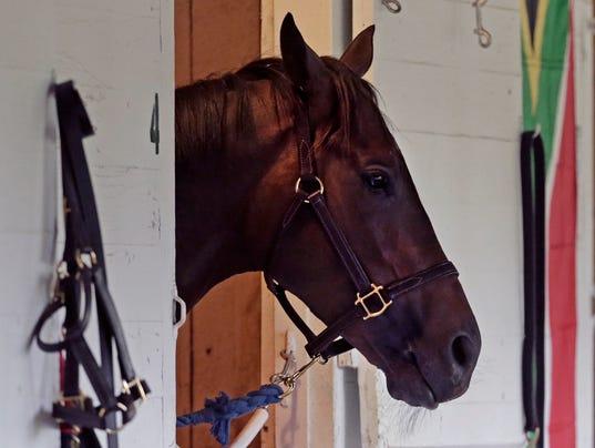 Kentucky Derby Horse _Drak.jpg