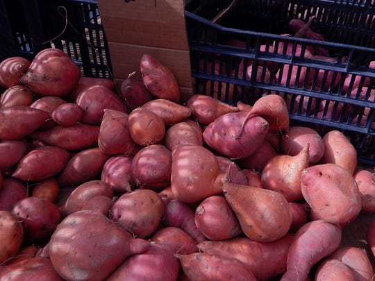 Sweet potatoes — sometimes mistakenly called yams — come in many colors, including purple, at the Her Produce stand at the downtown Ventura farmers market. Mash them, butter them, bake them and serve them with your favorite seasonings and additions.