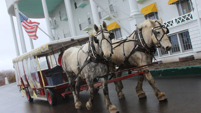 Horses pulling a carriage on the grounds of The Grand Hotel on Mackinac Island.