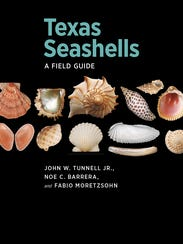 This field guide covers 300 of the better-known or
