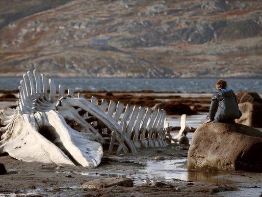 -Film Review Leviathan_Hill.jpg_20150114.jpg