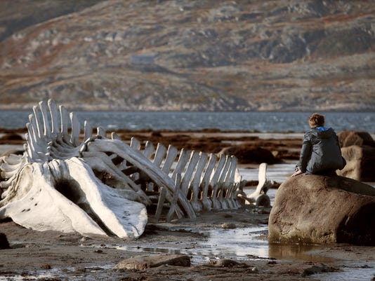 Film Review Leviathan