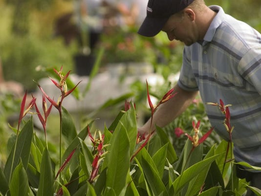 -plant seller.jpg_20051108.jpg