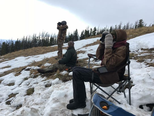 Observers count golden eagles in the Big Belt Mountains.