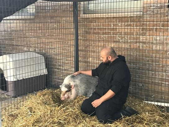 Animal Control Officer Jonathan Oakley pets Babe the