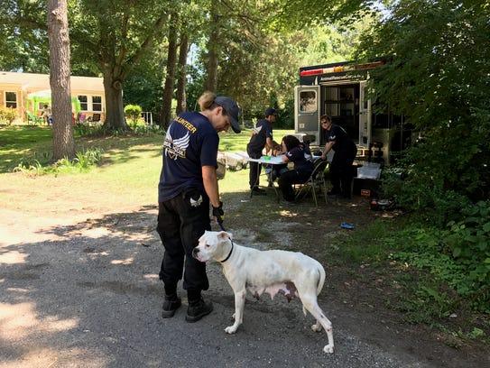 17 animals rescued from trenton 39 backyard breeder 39
