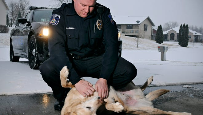 Albany police officer Matt Gannon is greeted by his retired partner Chuck on Tuesday. Gannon recently moved to the Albany Police Department from the St. Cloud Police Department and was able to adopt his partner Chuck, who was bing retired.