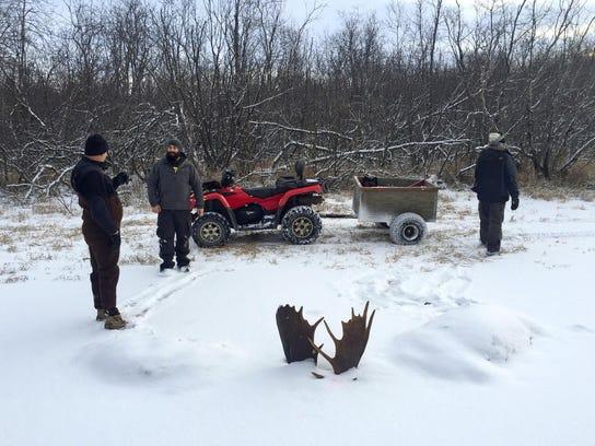 Frozen Moose Fight
