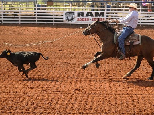 Thomas Metthe/Reporter-News Kenneth Black ropes a calf during the breakaway roping at the Texas Cowboy Reunion on Saturday, July 2, 2016, in Stamford.