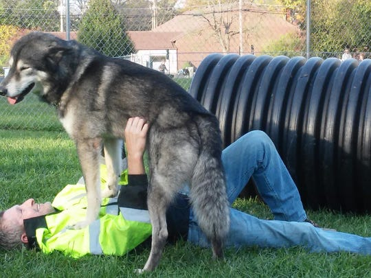 No'Vie plays with his owner, Michael Carpenter, at
