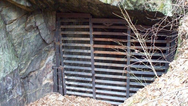 Adit #1 at P. Joseph Raab County Park contains a bat door to protect the bat population present during the winter.