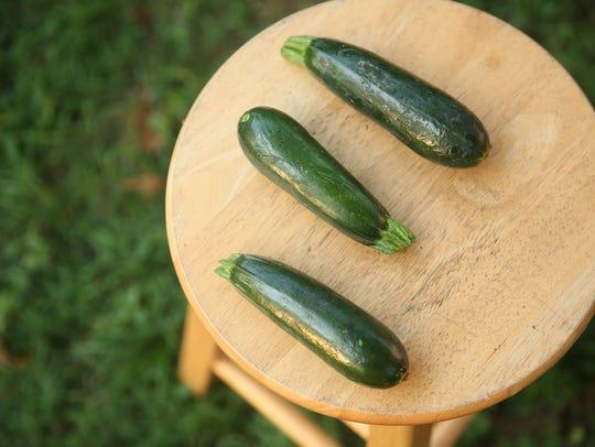 Zucchini from Green Door Gourmet, an organic farm in