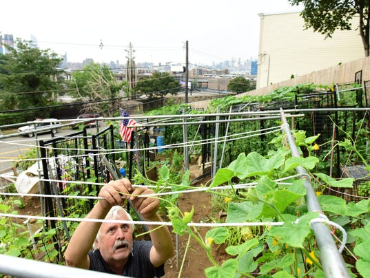 Garden Of State Mind This Man Farms 100 Feet Away From