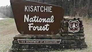 A Dry Prong man pleaded guilty on Monday to illegally digging at a Kisatchie National Forest protected site that dates back centuries, according to a release.