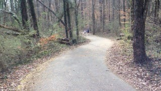 The Will Skelton Trail curves downhill through a forest before reaching the Tennessee River.