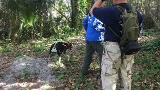 Jim Case, left, and Brian Seely,  dog handlers with Peace River K9 Search & Rescue Association, takes his female coonhound mix on a renewed search for Diana Alvarez, the 9-year-old San Carlos Park girl who disappeared from her home a year ago.