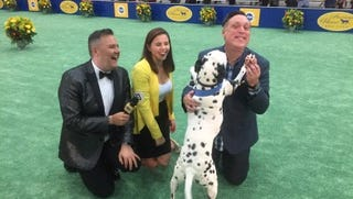 Scenes from the 2018 American Rescue Dog Show. On far left is Palm Springs resident Ross Mathews who provided color commentary and on far right is Palm Springs resident Michael Levitt who produced the event.