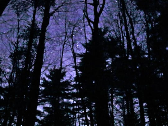 A starry night at Niquette Bay State Park in Colchester.