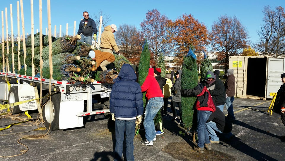 Boy Scout Troop 24 is selling Christmas trees for the