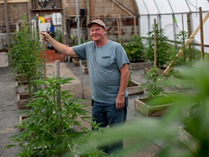 Tom Owens poses among his medical marijuana plants
