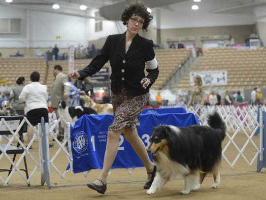 Susan Abelt runs with Harold during the collie competition at the 2018 Country Music Cluster Dog Show at the Williamson County Ag EXPO Park in Franklin, Tenn. on Saturday, March 10, 2018. This year's four-day show is set for March 7-10.