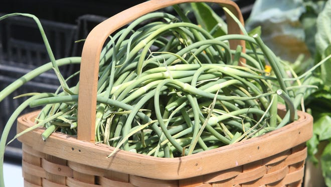 Farmers have to cut the green stems off the garlic to allow the bulbs to grow. The scapes taste great in a number of recipes.