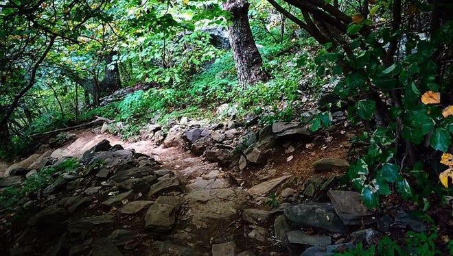 Trails near Humpback Rocks.